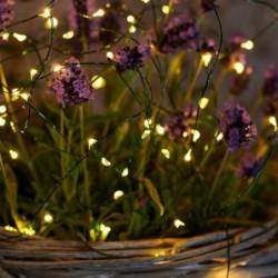 Guirlande lumineuse LED - Sirius - Knirke - 40L - Vert