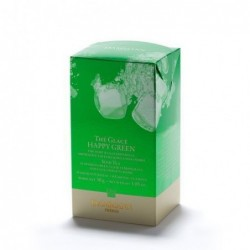 Boite 6 sachets - Thé vert glacé - Happy green - Dammann Frères