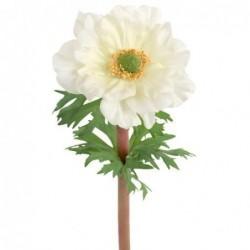 Anémone - Mr Plant - Blanche - 45 cm