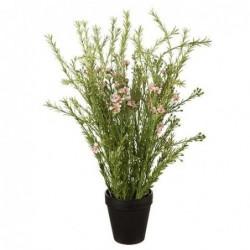 Wax - Mr plant - Rose - 55 cm