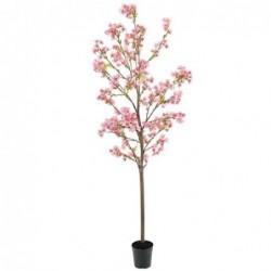 Cerisier - Mr plant - Rose - 150 cm