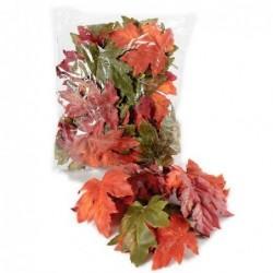 Feuilles d'érable - Mr plant - Automnal