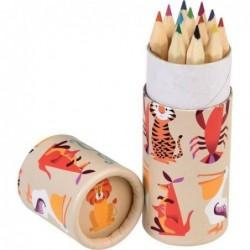 Cartouche de 12 crayons de couleurs - Colourful creatures - Rex