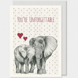 Carte postale - Animals -  East of India - Éléphant