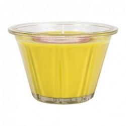 Bougie parfumée - Coing Rhubarbe - Comptoir de Famille