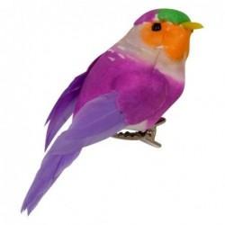 Oiseau Pince - Rice - Violet